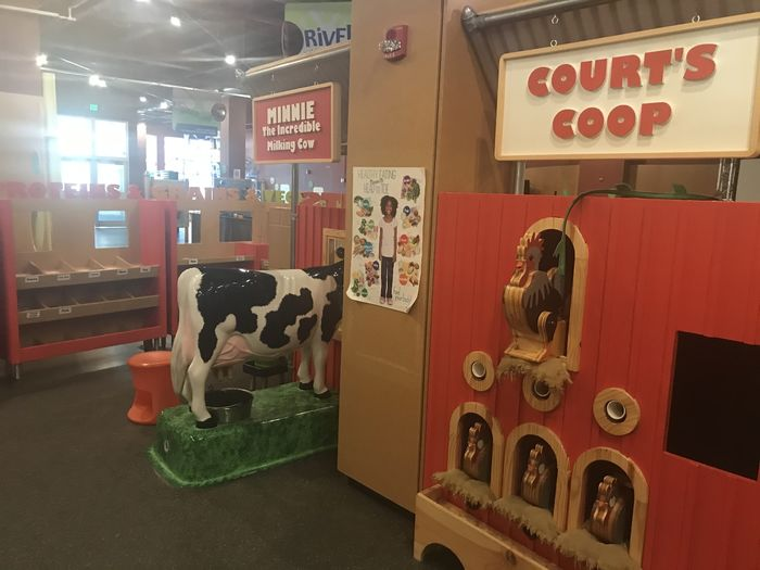 Cow and chicken models in a children's science center
